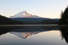 Mt. Hood at Trillium Lake 102013
