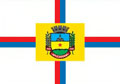 Bandeira da cidade de Apucarana