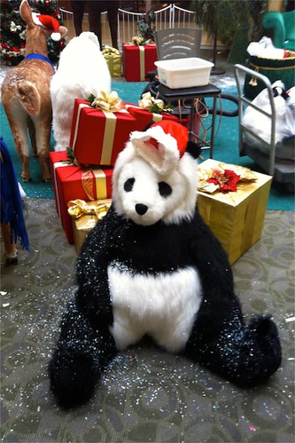 Day 5 Party panda