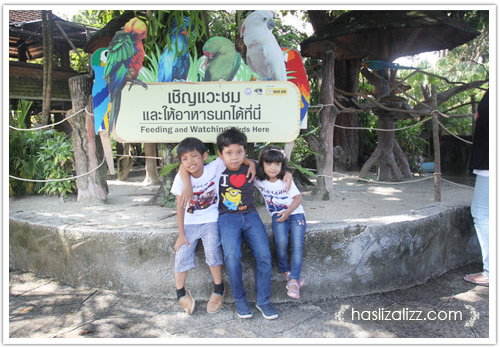 11713937916 1978a560cd o BERCUTI DI HATYAI THAILAND PART 6 | songkhla Zoo