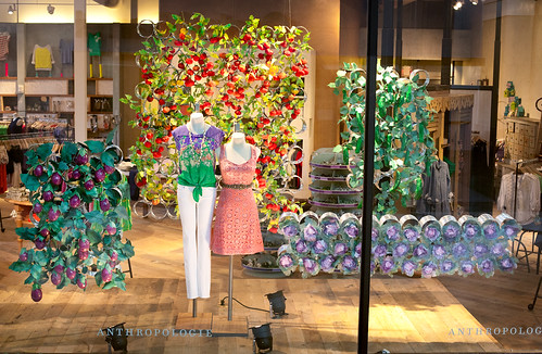 anthropologie-display-window