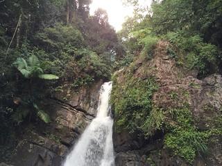 Image of La Mina Waterfall near Palmer. uploaded:by=flickrmobile flickriosapp:filter=nofilter riodelaminafalls