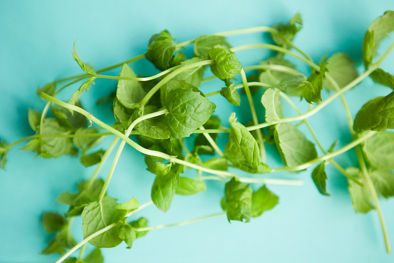 Mint Herbal Tea is great for headaches. It opens up the brain's constricted blood vessels, bringing relief to your pain.