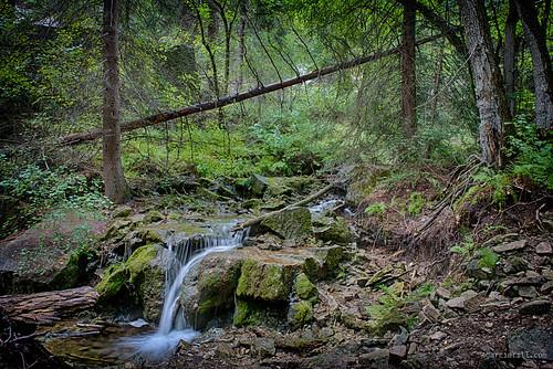 longexposure trees usa green nature water waterfall colorado unitedstates tripod hdr glenwoodsprings hanginglake glenwoodcanyon 2013