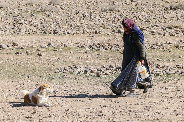 A qashqai woman and a dog, Firuzabad, Iran フィールーズ・アーバード、カシュガイ族女性と番犬