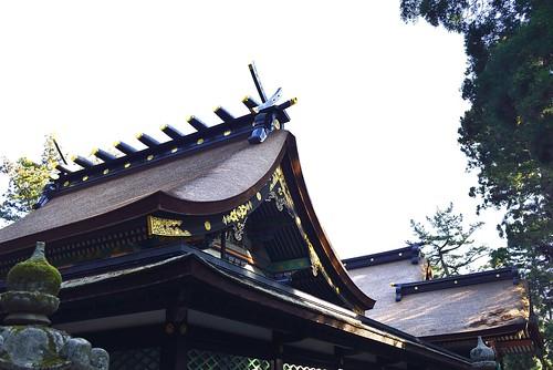 香取神宮本殿屋根 by leicadaisuki