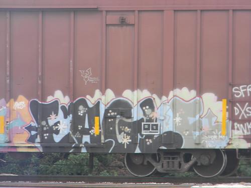 DSCN3241