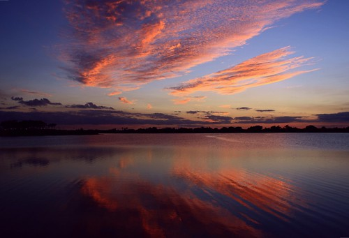 sunset lake reflection texture nature beauty silhouette palms landscape cool unitedstates natural florida clear chop cloudscape floridaeverglades southflorida palmbeachcounty slightbreeze bocaratonflorida redripple southcountyregionalpark quartasunset212