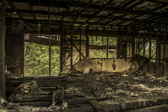 Burnt & Abandoned Lounge Room