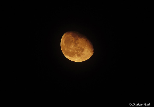 82% Orange Moon 20 March