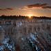 Sunset at Bryce Canyon, Utah by Thad Roan - Bridgepix