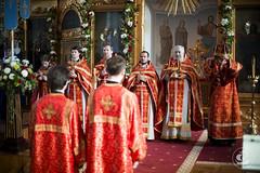 24-25 мая 2014, Неделя 6-я по Пасхе, о слепом / 24-25 May 2014, 6th Sunday of Pascha, Sunday of the blind man