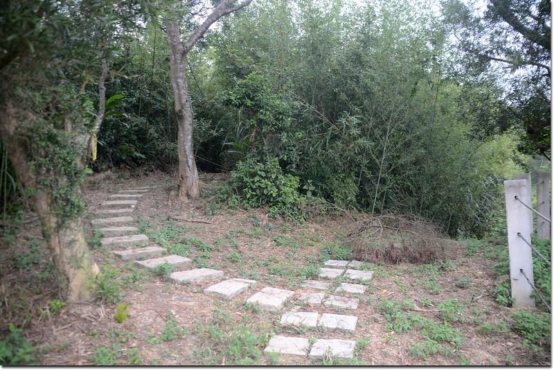 火燒寮山登山步道竹林小徑入口