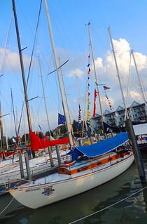 sail 063 (1)