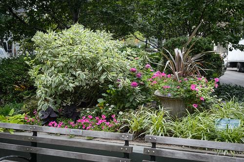 FilipWolak-LSBID-Gardens-8360