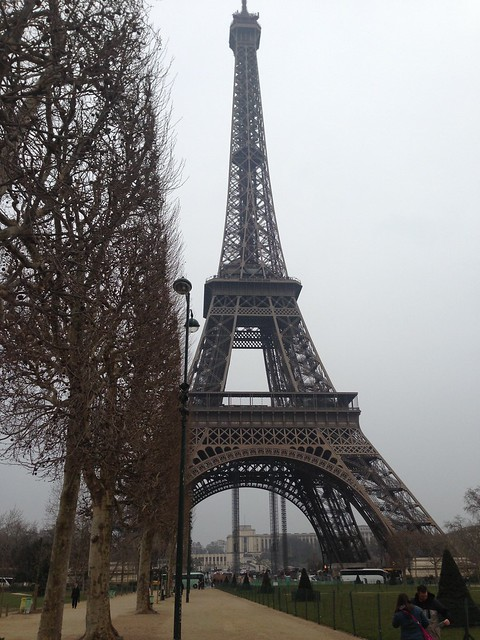 Paris - the Eiffel Tower under a grey sky, 2013