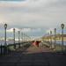 Strolling Down Pier 7