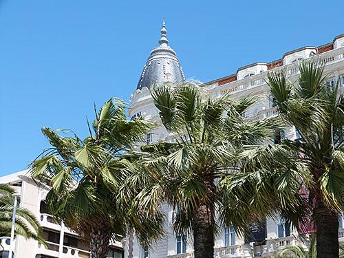 vent dans les palmiers
