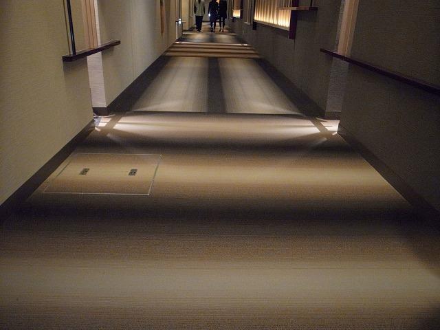 <p>g)リニューアルされて強羅棟へ向かう廊下のじゅうたんです。<br /> 段差があるように見えませんか?<br /> 本当は平らな床です。黒いところが、影のように見えてそこに段差があるようなドキッと感がありました。</p>