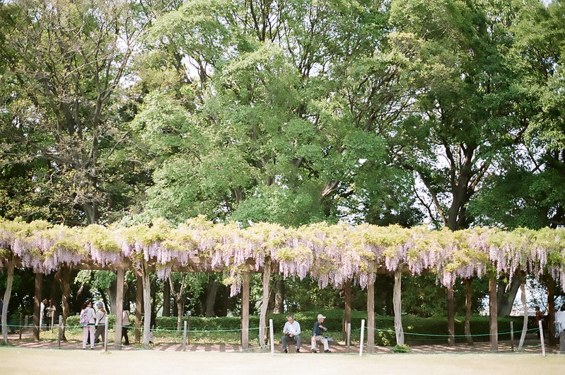 Tatebayashi, Gunma