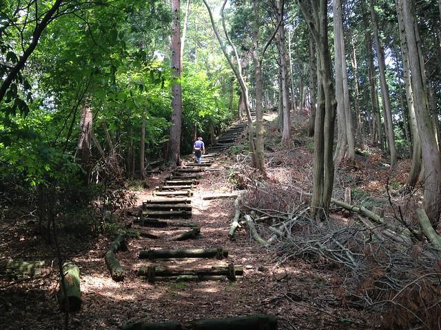 妙法ヶ岳 東海自然歩道 丸太階段