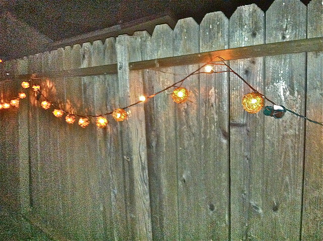 String Lights On Fence : string of lights on fence Flickr - Photo Sharing!