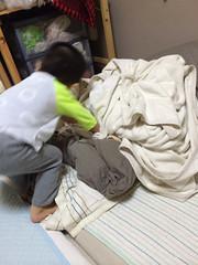夜寝る前のとらちゃん 2013/10