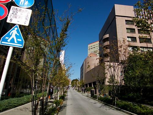otyanomizu-2013119_ 14