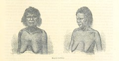 Image taken from page 39 of 'Viaje á Nueva Guinea (Traduccion y arreglo del Dr. Moreno). ... Los dibujos ... hechos por M. E. Mesplés, con arreglo á las fotografías inéditas del autor'