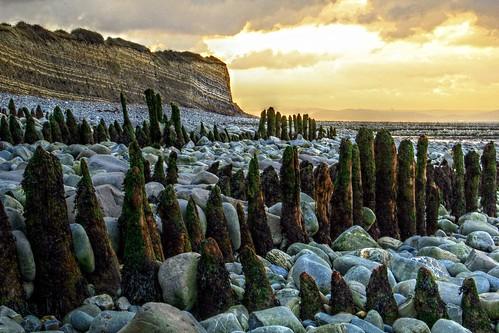sunset cloud beach landscape fossil coast seaside somerset pebbles windswept geology intertidal seashore hdr bristolchannel kilve lilstock bridgwaterbay