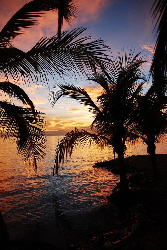 14. Mar Caribe. Autor, Sam Fowler
