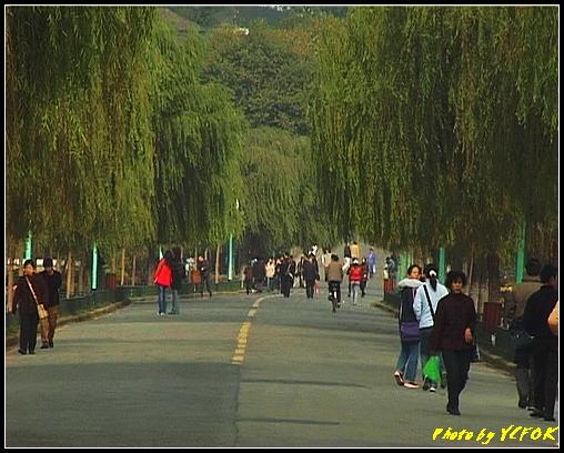 杭州 西湖 (其他景點) - 147 (白堤)