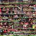 Dennis Bergkamp's 100 goals for Arsenal by Stuart MacFarlane