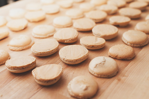 Shells for Valentine's Day Salted Caramel Macarons