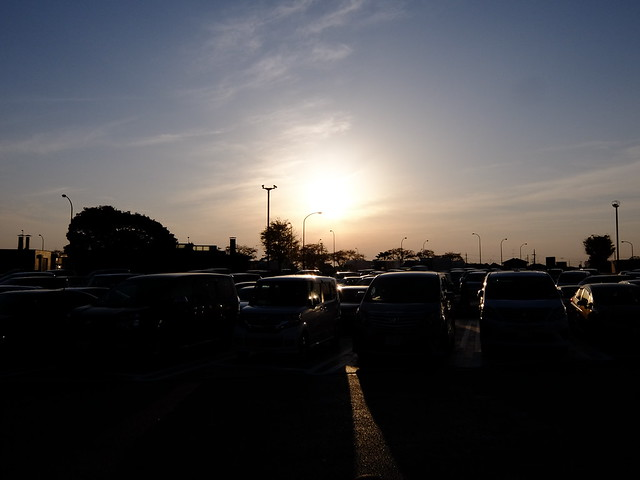 Japan's Evening