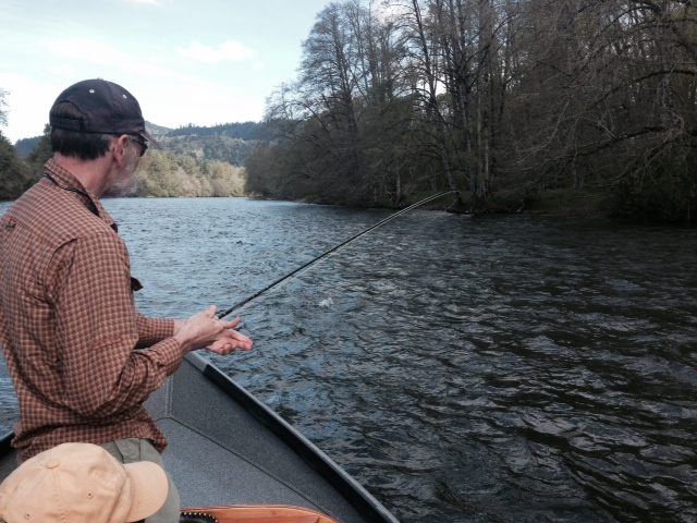lower mckenzie river fly fishing
