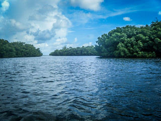 Indian River Paddling-017