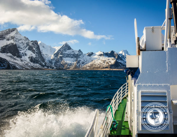The Lofoten Islands: Paradise Above the Arctic - Fishing in Lofoten Islands