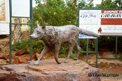 Statue of the Red Dog, Dampier
