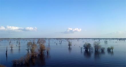 A Flooded Basin
