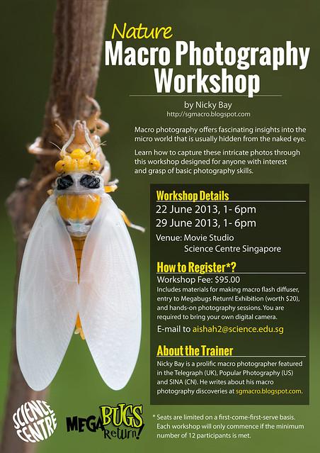 Macro Photography Workshop Poster