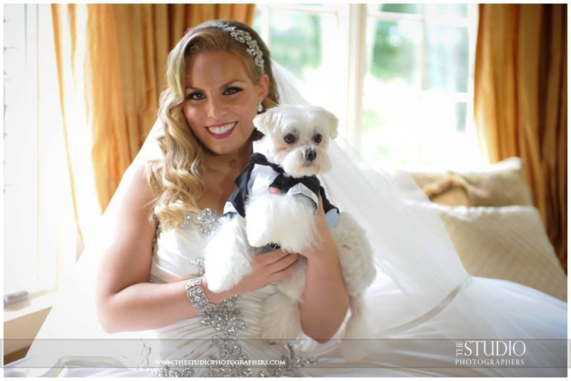 Swarovski bridal headband, CZ bridal cuff, bride with dog, dog wedding, dog tuxedo