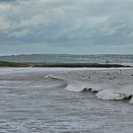 Coney beach waves