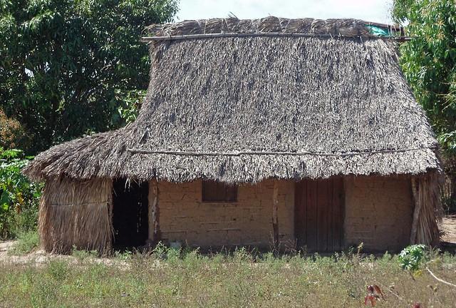 Palm thatched hut casa con techo de palma l zaro for Dibujos en techos de casas