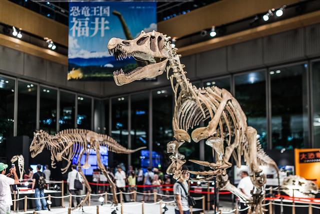 20130828_01_大恐竜展 in 丸の内 2013 ~福井県恐竜博物館コレクション~