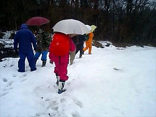 水口谷の林寄りに,ほんのわずか雪が残っていた.