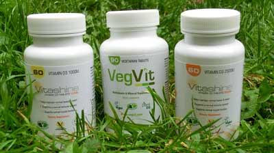 vegvits