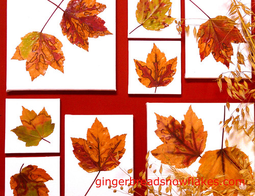 Favorite Fall leaves Mounted on Canvas and hung on the wall