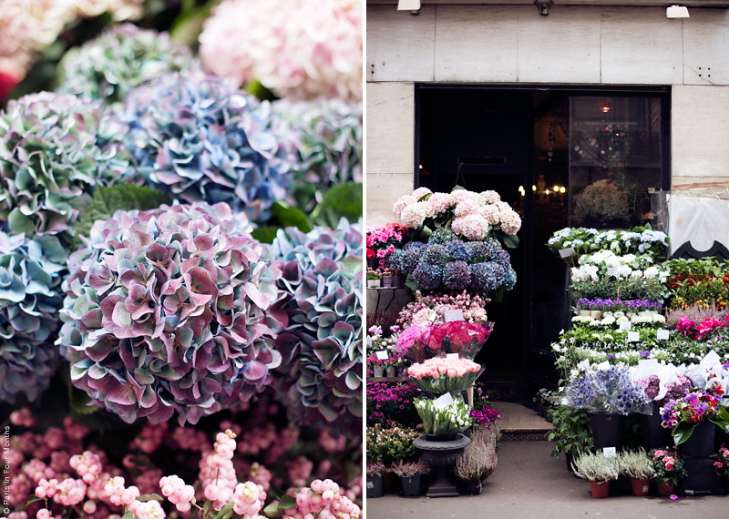 Parisian Flower Shop, photo by Carin Olsson (Paris in Four Months)