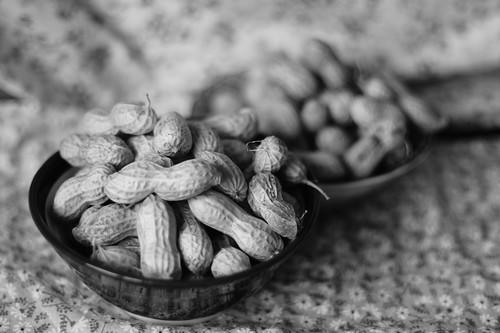 現代版!?子どもと楽しむ節分の豆まきの画像2